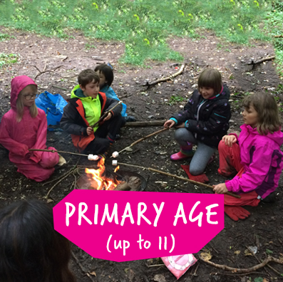 Primary Age page link